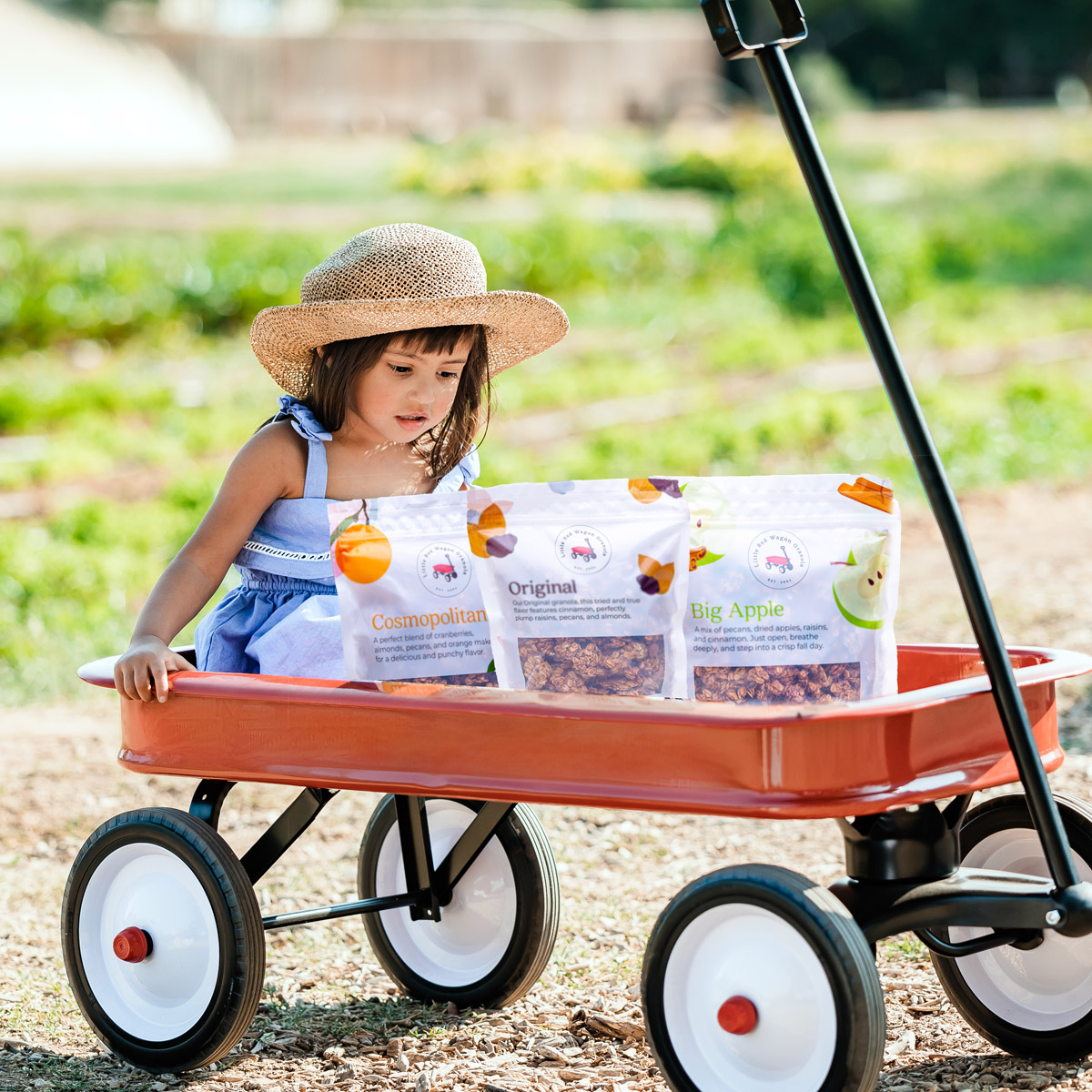handmade granola flavors in wagon with little girl